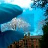 Células Solares podem fazer com que janelas gerem energia elétrica